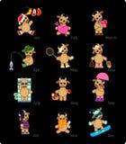 taureaux Photo stock