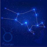 Taurode ConstellationFotografía de archivo