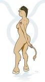 Tauro Femme Imagen de archivo libre de regalías