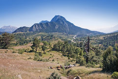 Taurus. Mountains in nature park near kemer, antalya, turkey Royalty Free Stock Photos