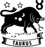 Taurus Stock Photo