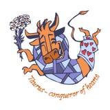 Taurus Conquering Hearts glat gjorde le som var lyckligt, en hoppa med en bukett av blommor av kamomillar royaltyfria foton