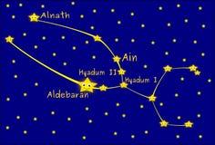 Taurus constellation Royalty Free Stock Images