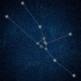 Taurus Constellation. Zodiac Sign Taurus Constellation royalty free illustration
