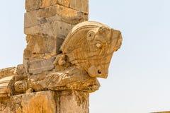 Taurus head Persepolis Stock Photo