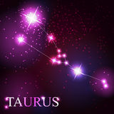 Taurus zodiac sign of the beautiful bright stars Royalty Free Stock Image