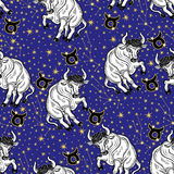 Taurus zodiac sign,constellation, stars.Horoscope  Stock Image