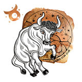 Taurus zodiac sign.Horoscope circle.Watercolor Royalty Free Stock Photography