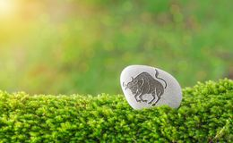 Taurus zodiac symbol in stone. On grass with nature bokeh light background royalty free stock image