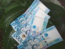 Tausend Pesorechnungen lizenzfreies stockbild