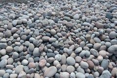 Tausenden der glatten runden Steine Stockfoto