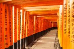 Tausenden der japanischen Schreine, die eine Tunnelwegweise bilden stockfotos