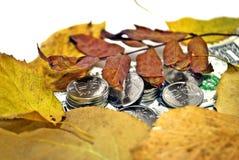 Taux de change d'automne Photos libres de droits