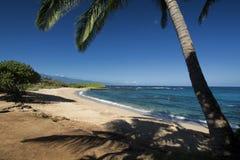 Tavares Beach, het noordenkust, Paia, Maui, Hawaï Stock Foto's