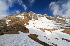 Tavela peak in Stelvio National Royalty Free Stock Images
