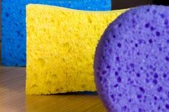 Tavern of sponges Stock Photos