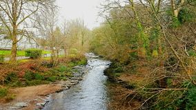 Tavistock River Tavy . Devon on the edge of dartmoor. The Tavy is a river on Dartmoor, Devon, England. The name derives from the Brythonic root ... It has given royalty free stock photos