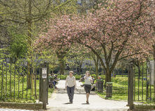 Tavistock Square Stock Photography