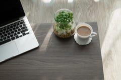Tavola dell'ufficio con il caffè della tazza, il vaso dell'albero del giardino ed il computer portatile freschi immagine stock libera da diritti