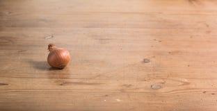 Tavola della cipolla Fotografie Stock