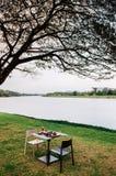 Tavola di cena contemporanea sotto il grande albero in parco dal fiume fotografia stock libera da diritti