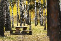 Tavola di legno con i banchi Fotografia Stock