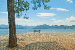 Tavola di legno con i banchi sulla piattaforma in mare con il grande pino Fotografie Stock Libere da Diritti