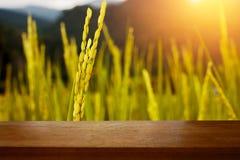 Tavola di legno del bordo davanti al campo del risone dorato fotografia stock