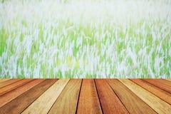 Tavola di legno della piattaforma sopra il bello pascolo vago Fotografia Stock
