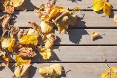 Tavola di legno e foglie autunnali gialle, vista superiore immagine stock