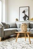 Tavola di legno su tappeto accanto allo strato d'angolo grigio in salone Fotografie Stock Libere da Diritti