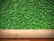 Tavola di legno sulla parete delle foglie verdi Immagine Stock