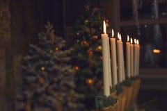 Tavola di Natale e decorazione interne dell'albero Immagini Stock