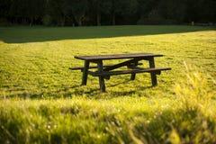 Tavola di picnic Immagini Stock Libere da Diritti