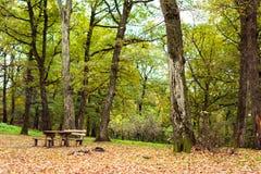 Tavola di picnic del parco Fotografia Stock Libera da Diritti