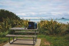 Tavola di picnic di legno alla spiaggia vicino a Dunedin, isola del sud, Nuova Zelanda fotografia stock libera da diritti