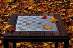 Tavola di scacchi nel parco Immagini Stock