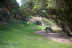 Tavola e banco di picnic di legno all'aperto su area sotto gli alberi, concetto di rilassamento dell'erba Fotografia Stock Libera da Diritti