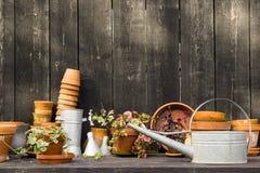 Tavola idilliaca romantica della pianta nel giardino con i vecchi retro vasi, strumenti e piante del vaso di fiore Fotografie Stock Libere da Diritti