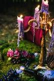 Tavola romantica con muschio, candele di gocciolamento immagini stock libere da diritti