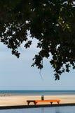 tavola sotto ombra e l'albero sulla spiaggia con l'oceano e stagno in una scena su luce solare di sera Immagini Stock