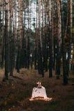 Tavola sveglia con molte candele di combustione per la cena romantica nella foresta di sera di autunno Fotografia Stock