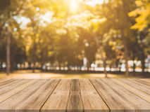 Tavola vuota del bordo di legno davanti a fondo vago Tavola di legno marrone di prospettiva sopra gli alberi della sfuocatura nel Immagine Stock Libera da Diritti
