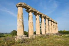 Tavole Palatine. Metaponto. Basilicata. Italy. Stock Photo