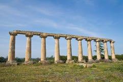 Tavole Palatine. Metaponto. Basilicata. Italy. Stock Photography