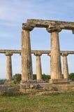 Tavole Palatine. Metaponto. Basilicata. Italy. Royalty Free Stock Image