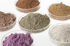 Tavolozza cosmetica delle argille per il trattamento del corpo e della STAZIONE TERMALE Immagini Stock