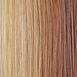 Tavolozza dei capelli diritti. Pendenza Backgroun Fotografia Stock Libera da Diritti