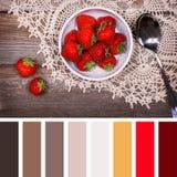 Tavolozza del dessert della fragola Fotografie Stock