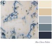 Tavolozza del formaggio blu Immagine Stock Libera da Diritti